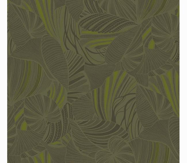Обои Loymina Amazonia Ins5 005/1